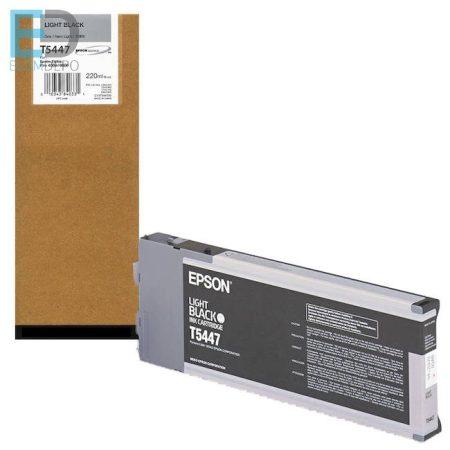 Epson C13T544700 220 ml light black